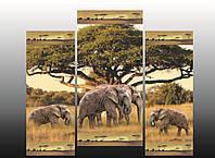 """Модульная картина """"Африка"""""""
