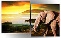 "Модульная картина ""Слон на закате"""