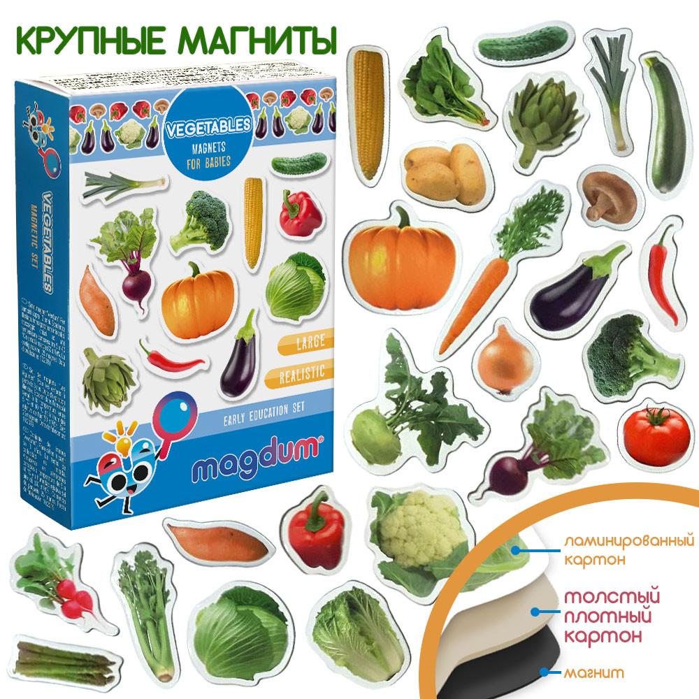 "Набор магнитов ""Овощи"", ML4031-12EN"