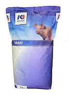 Концентрат (БМВД) для супоросних свиноматок 10% KOUDIJS Каудайс (™ D-МІКС) Україна-Голландія