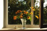 Окна Качалы,купить окна в Качалах с установкой