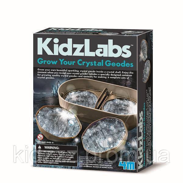 Набір для творчості 4M Вирощування кристалів (00-03919/EU)