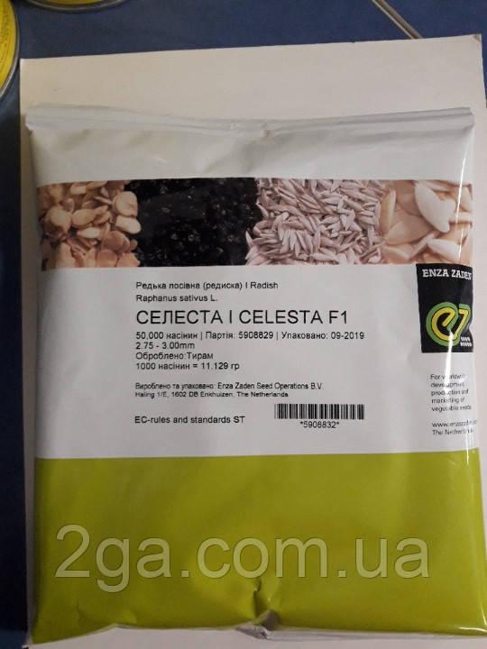 Селеста F1 / Celesta F1 - Редис, Enza Zaden. 50 000 семян. 2.75-3.00 мм