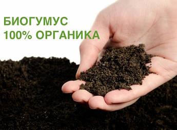 Органічне добриво Біогумус, вермикомпост, грунт для теплиць (50 кг)
