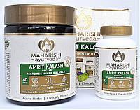 Махариши Амрит Калаш, антиоксидант, для иммунитета и имоложения, MAK  (MA5 таблетки + МА4 паста), фото 1
