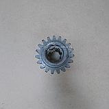 Шестерня постоянного зацепления КПП ЮМЗ │ 40-1701324, фото 4