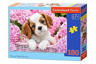 Пазлы Castorland Щенок среди розовых цветов 180 элементов
