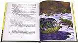 Детская книга Анна Гурова: Даша в поисках солнца Для детей от 5 лет, фото 2