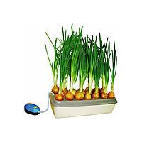 """Проращиватель для зеленого лука"""" Луковое счастье"""", фото 1"""