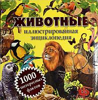 Животный. Иллюстрированная энциклопедия. Детские книги.
