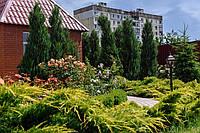 Ландшафтный дизайн, озеленение участка