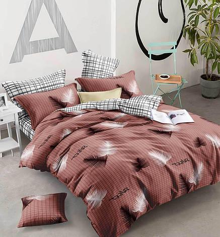 Двуспальный комплект постельного белья евро 200*220 хлопок  (13556) TM KRISPOL Украина, фото 2
