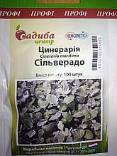Семена цинерарии приморской Сильверадо 100 шт Hem Zaden Голландия