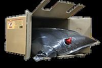 Cоевый соус для креветок Nihon 18,9л картонная коробка ДанСой Нихон 🦑 от ТМ Дансой