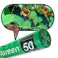 Агроволокно Agreen плотность 50 ( 1.6м х 100м) черное