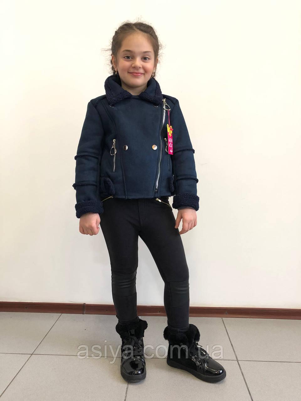 Куртка-косуха на дівчинку весняний синього кольору