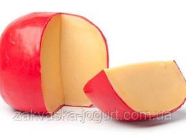 Сыр ЭДАМ (10-12 литров) только закваска