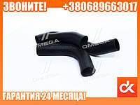 Патрубок радиатора ГАЗЕЛЬ-БИЗНЕС 2705 дв. 4216 (к-т 3шт) СТАНДАРТ