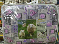 Одеяло из овечьей шерсти 1.5 поликотон (Украина)