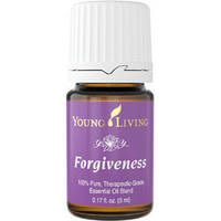Forgiveness - Прщение