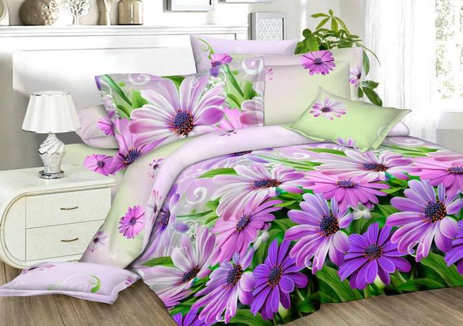 Двуспальный комплект постельного белья евро 200*220 хлопок  (13549) TM KRISPOL Украина, фото 2
