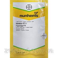 """Насіння огірка кущового, ультраранні, придатного для засолювання """"Гектор"""" F1 (1000 насінин) від Nunhems, Голландія"""