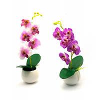 Орхидея в горшке (28х7х7 см) ( 27215)