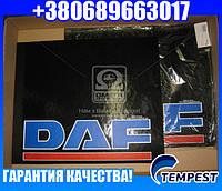 Брызговик 500X600X4 с (цветной) надписью DAF (TEMPEST)