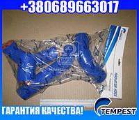 Патрубок радиатора УАЗ 3741 дв 4213 (компл. 4 шт. силикон) (TEMPEST)