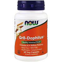 Now Foods, Gr8-Dophilus (60 капс), пробиотики 4 млрд., LactoBif