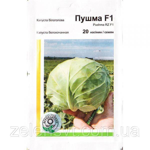 Насіння капусти білокачанної, ультраранньої «Пушма» F1 (20 насіння) від Rijk Zwaan, Голландія