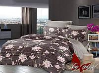 Комплект постельного белья двухспальный с компаньоном S271 ТМ TAG 2-спальный, постельное белье двухспальное
