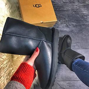 UGG Classic Black Leather, фото 2