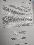 Історія міста Києва М.Берлинський, фото 3
