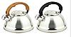 Чайник з нержавіючої сталі 3.0 л. Edenberg EB-3539
