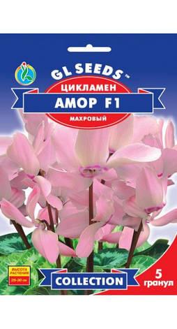 Семена Цикламен F1 Амор, фото 2