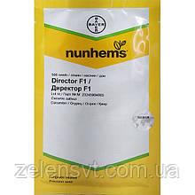 """Насіння огірка """"Директор"""" F1 (500 насіння) від Nunhems"""