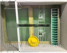 Брудер-інкубатор 2в1 «Курочка Ряба» автоматичний цифровий на 130 яєць ТЕН в корпусі брудера, фото 3