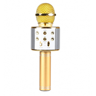 Беспроводной караоке микрофон с колонкой Wster WS858 Gold (RO250-1WS858)