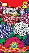 Семена цветов  Цинерария (крестовник) Шедевр 10 шт смесь (Плазменные семена)