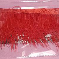 Перья страуса на ленте. Красная.25 см.