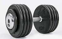 Гантель цельная профессиональная стальная (1шт) 45кг (сталь, сталь хромированная, вес 45кг) PZ-TA-7231-45