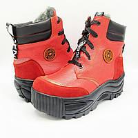 Женские зимние кожаные ботинки на натуральном меху Z34-441 красн.к.платф