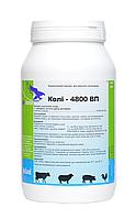 Колі - 4800 ВП (колістину сульфат) Интерхими, 1 кг