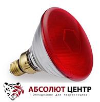 Лампа інфрачервона для обігріву тварин 100Вт