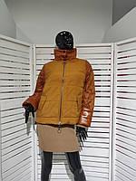 Куртка Normcore
