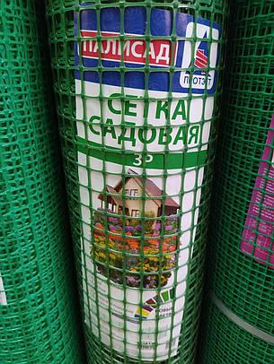 Сетка садовая ЗР-15 (яч.20*20мм), рулон 1мх20м, фото 2