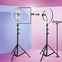 Кольцевая лампа 26см на штативе 2м. Светодиодное кольцо со штативом
