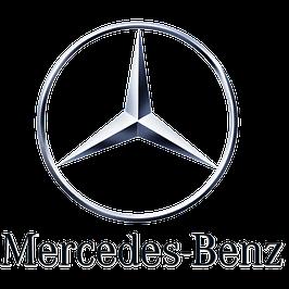 Боковые пороги Mercedes-Benz
