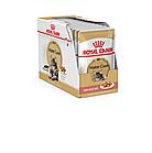 Корм для котов MAINE COON ADULT (В СОУСЕ)   0,085 кг, фото 2
